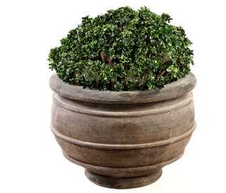 Lipa Planter