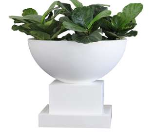 Pietro Volcano Bowl and Base