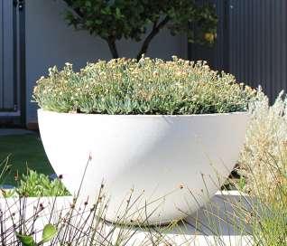 Pietro Volcano Mini Bowl