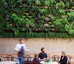 PAPS Vertical Garden System