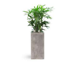 Litestone Tall Cube Planter