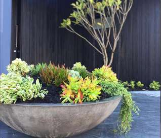 Litestone Zen Planter Bowl