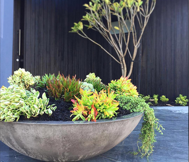 Litestone Zen Bowl Garden Planter Wg Outdoor Life Perth
