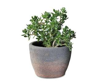Old Stone Bengal Planter